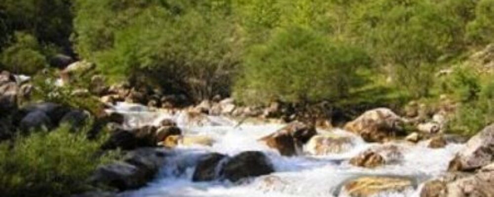"""Εθνικό Πάρκο …""""Ιωαννίνων"""""""
