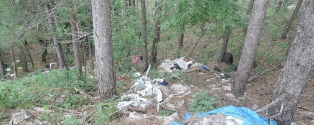 Με επιτυχία ο εθελοντικός καθαρισμός στα Τζουμέρκα.