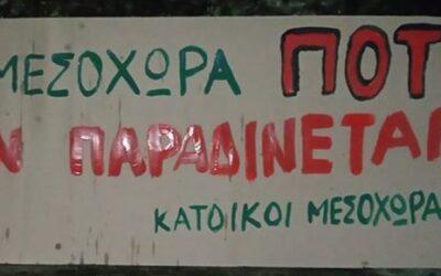mesoxora